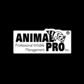 Animal Pro Inc.