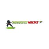Mosquito Ninjas