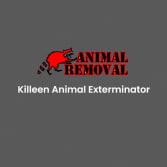 Killeen Animal Exterminator