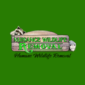 Nuisance Wildlife Removal