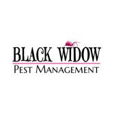 Black Widow Pest Management
