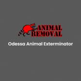 Odessa Animal Exterminator