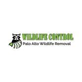 Palo Alto Wildlife Removal