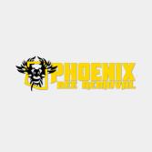 Phoenix Bee Removal