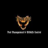 Phoenix Pest Management & Wildlife Control