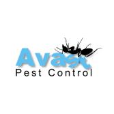 Avast Pest Control
