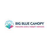 Big Blue Canopy Pediatric Gym & Therapy Services