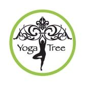 Yoga Tree Plano