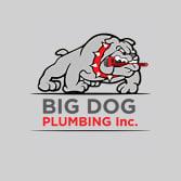 Big Dog Plumbing Inc.