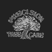 Precision Tree Care