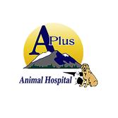A Plus Animal Hospital