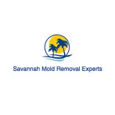 Savannah Mold Removal Experts