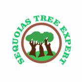 Sequoias Tree Expert