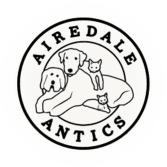Airedale Antics