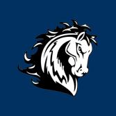 Stallion Moving Services