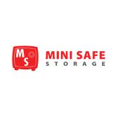 Mini Safe Storage
