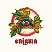 Enigma Tattoo & Piercing Studio