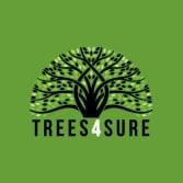 Trees 4 Sure