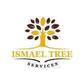 Ismael Tree Service