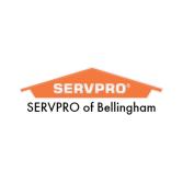 SERVPRO of Bellingham