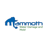 Mammoth Carpet, Water Damage and Mold