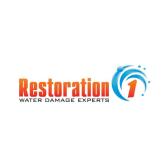 Restoration 1 of Charleston