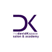 thedavidKspace salon
