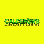 Calderons Landscape