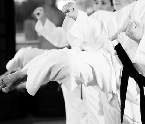 cover image of Core Martial Arts  karate-taekwondo-martial-arts/1.jpg