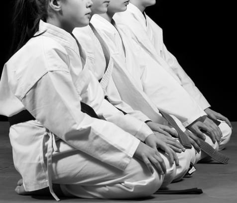 cover image of In W. Kim's Martial Arts Academy  karate-taekwondo-martial-arts/4.jpg