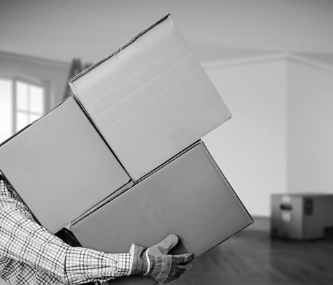 cover image of Meathead Movers  moving/4.jpg