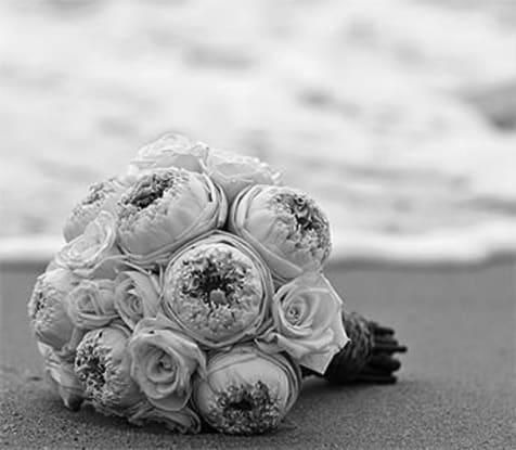 cover image of Jessica Bree Photography  wedding-photography/3.jpg