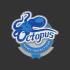 Octopus Home Inspections, LLC
