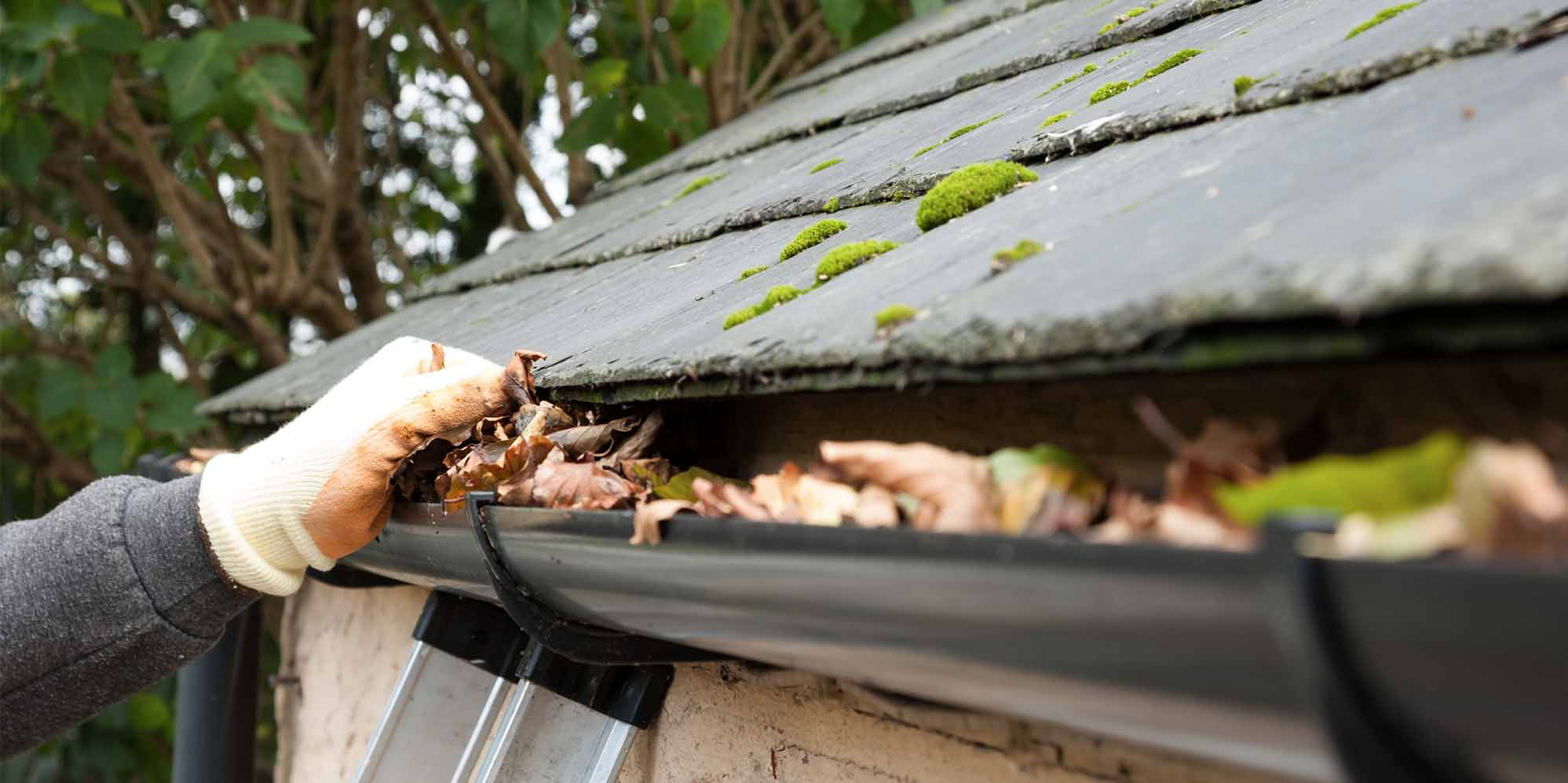 13 Best San Jose Gutter Cleaners Expertise