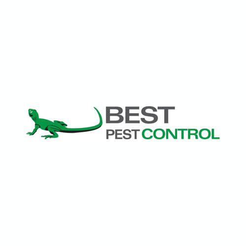 29 Best Orlando Pest Control Companies Expertise