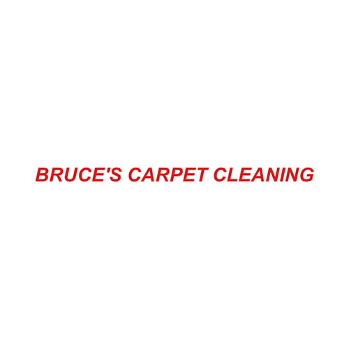 6 Best Carson City Carpet Cleaners Expertise
