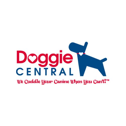 19 Best Los Angeles Dog Daycares Expertise Com