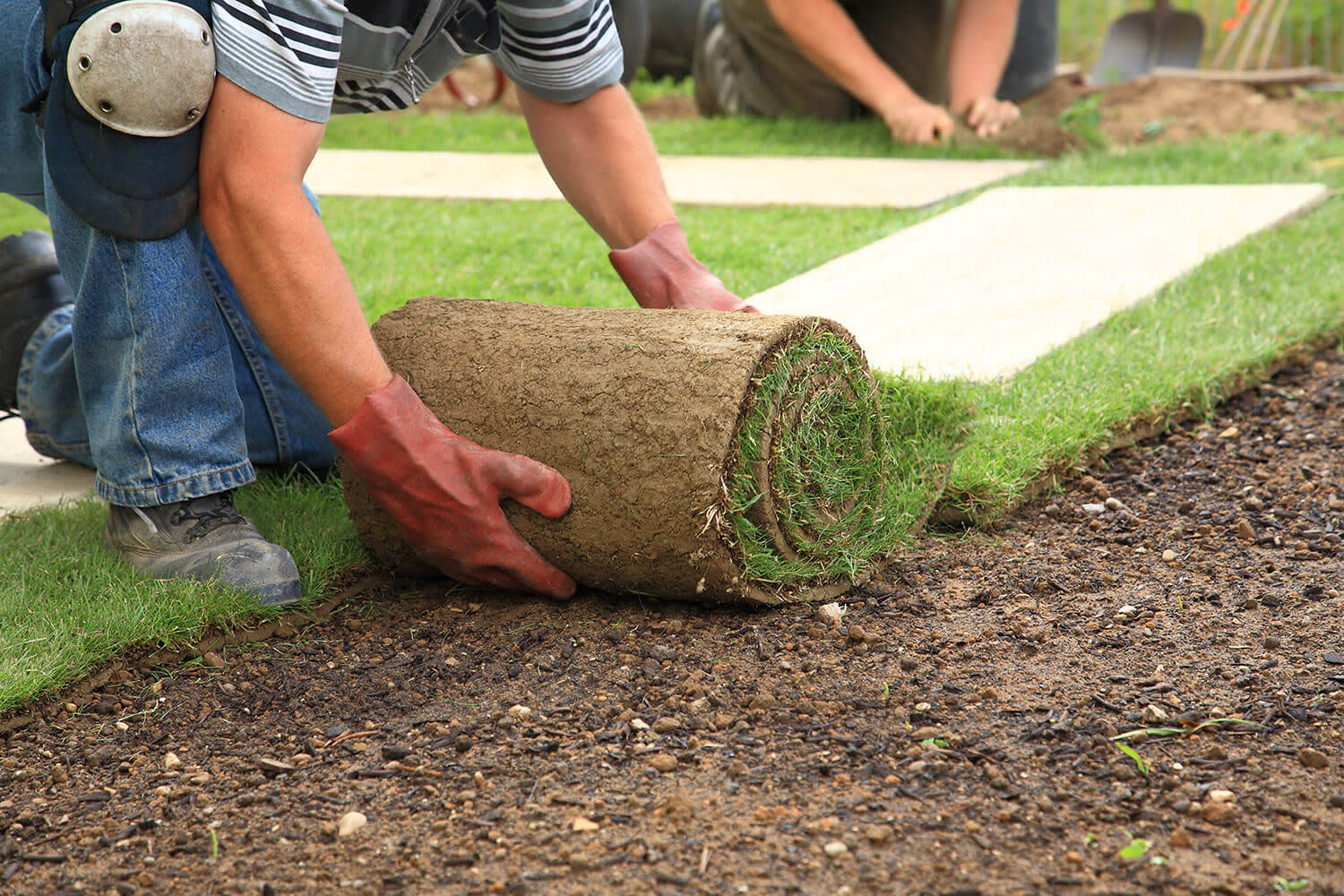 Factors To Consider When Hiring A Landscape Contractor