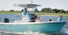 Boat Cruises & Tours