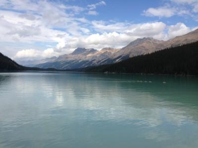 Lake Peyto, Banff - Lake of Inspiration