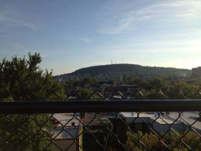 Mount Royal from the Rooftop