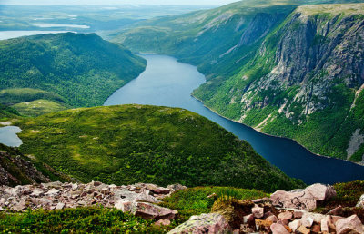 Image result for parc national du gros morne