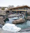 Zoo d'Edmonton