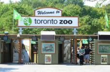 Zoo de Toronto