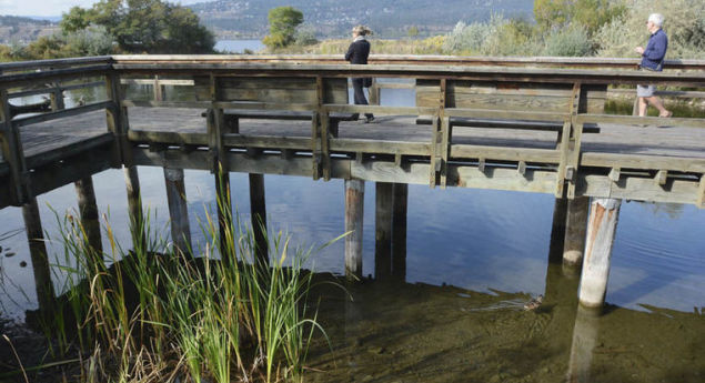 Rotary Marsh Park