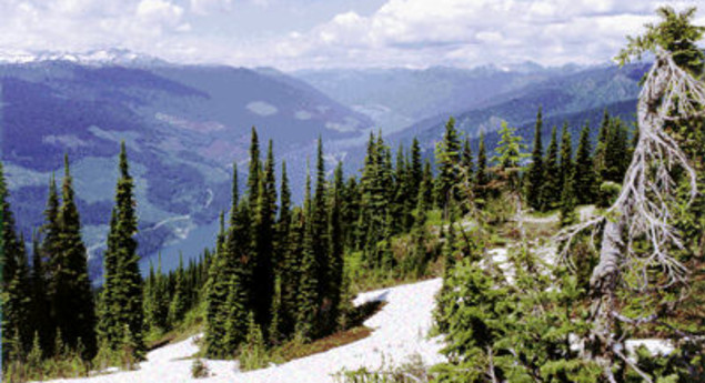 Mount Revelstoke National Park trails