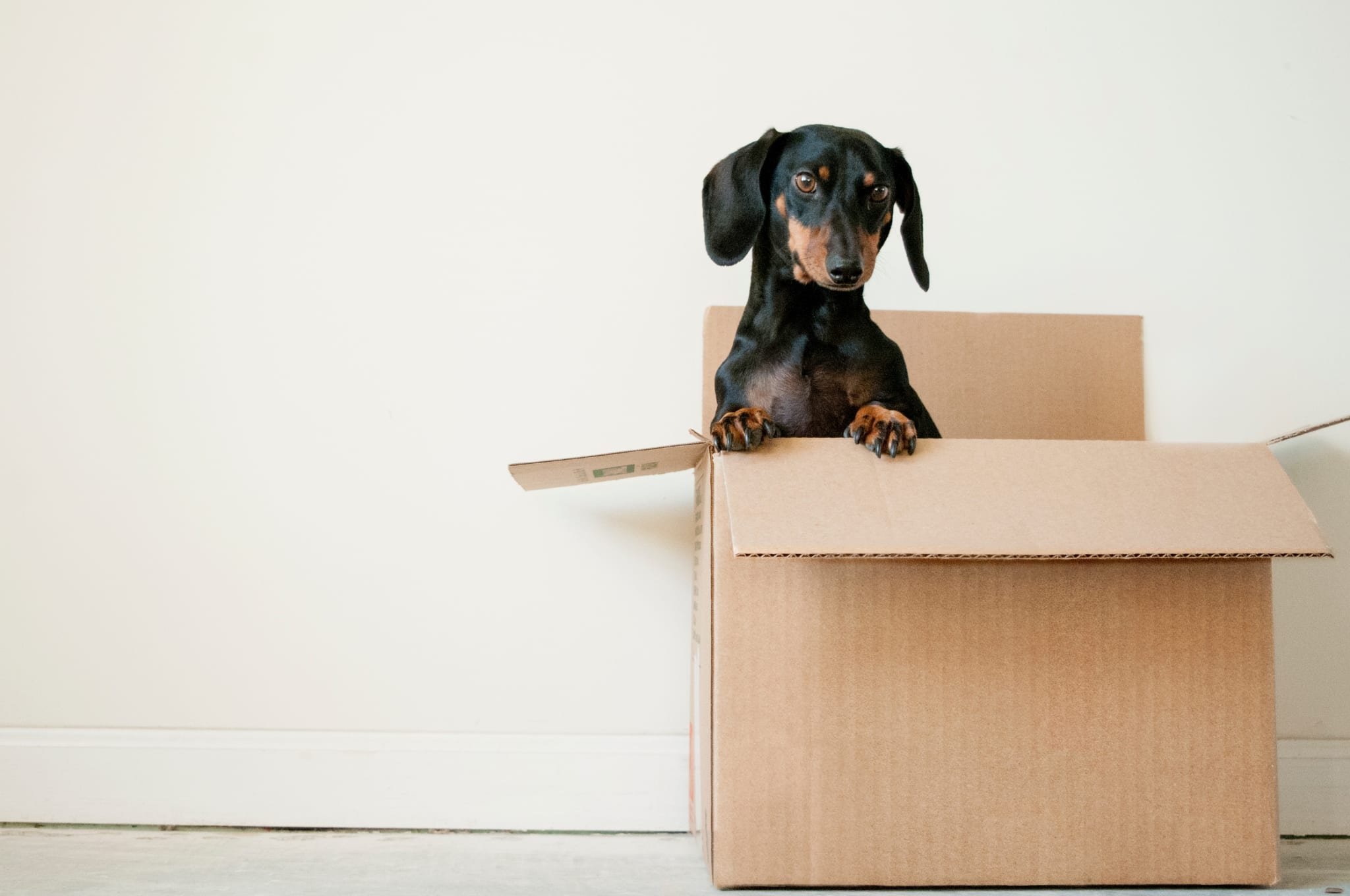 Tenant Move In Landlord Tips