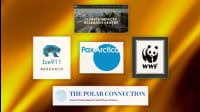 5 Organizations Fighting For The Arctic Region