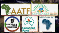 5 Dedicated Groups Working Toward Food Security For All
