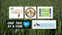 5 Compassionate Organizations Helping Animals Have Better Lives